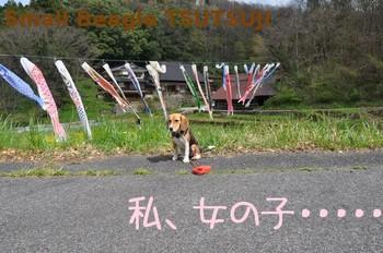 2010_0282.jpg
