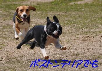 2010_0326.jpg