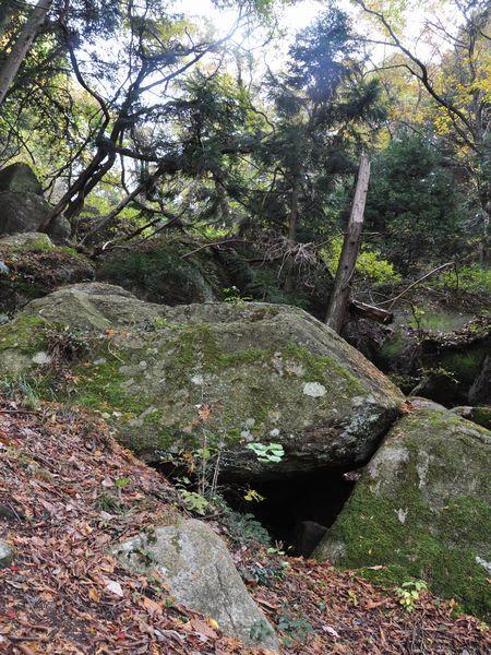 2010_0634.jpg