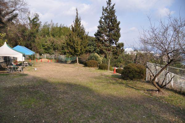 2011_0050.jpg