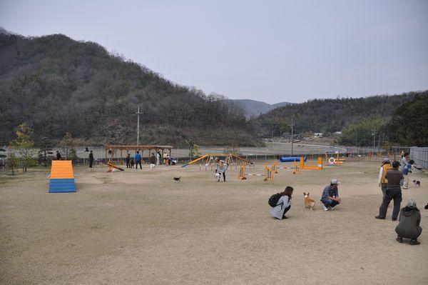 2011_0233.jpg