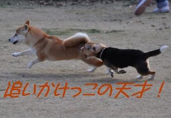 2010_0325.jpg