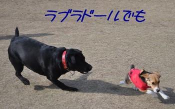 2010_0330.jpg