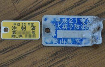 2010_0438.jpg